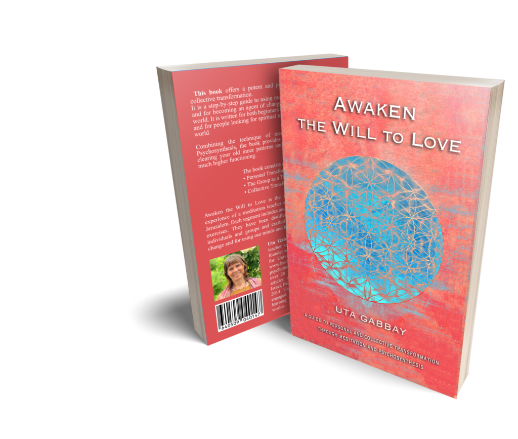 AWL Awaken the Will to Love book cover